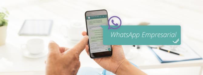 whatsapp-empresarial-clinica